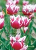2013年4月号(Vol12)